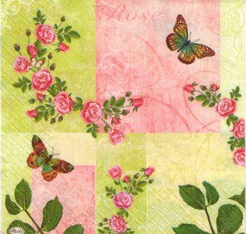 roses & butterflies