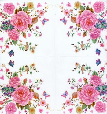 quarter roses
