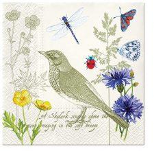 birds & butterfly