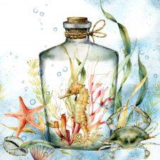 Bottle seahorse