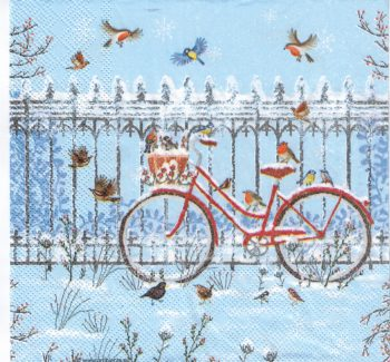 Snowy Bicycle