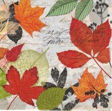 fall leaves lettering