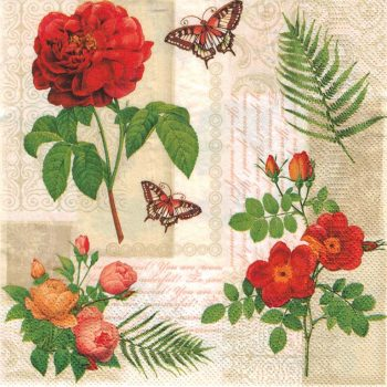 vintage red roses butterfly