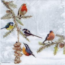 Paper Napkins Colorful Birds in Winter Snow