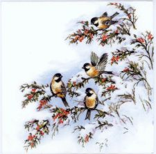 Event Paper Napkins Winter Birds in the Snow