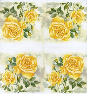 yellow roses open