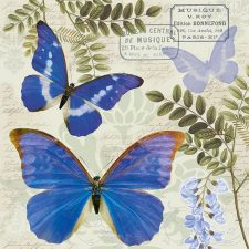 Decorative Paper Napkins | Blue Butterflies
