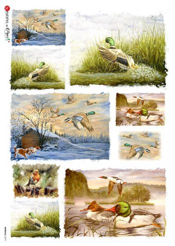 Decorative Rice Paper from Italy | Wild Ducks