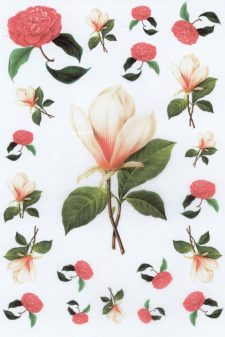 Decoupage Rice Paper | Magnolia & Red Roses