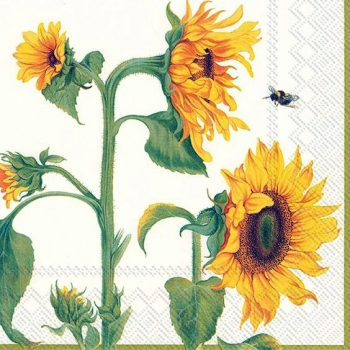 sunflower paper