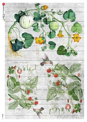 Italian Rice Paper for Decoupage | Harvest of Fruit Melons Berries