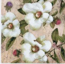 Event Paper Napkins White Magnolias