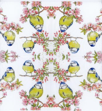 birds in the cherry blossom