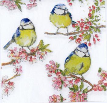 birds in the cherry tree