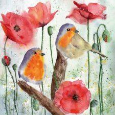 robin & poppy