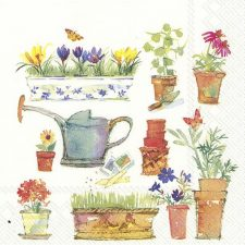flowers in the pots