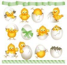 eater chicks