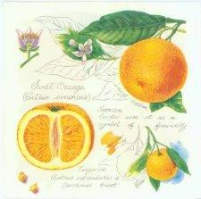 Decoupage Napkins of Oranges