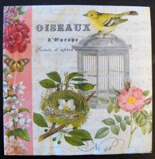 Decoupage Paper Art Napkin | Oiseaux d'Europe (Birds of Europe)