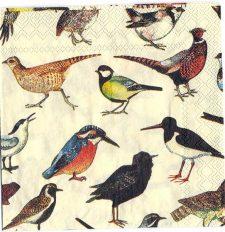 Decoupage Paper Art Napkin | British Bird Collection