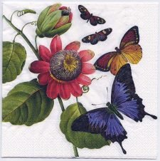 Paper Napkin | Butterflies Flowers and Serenity