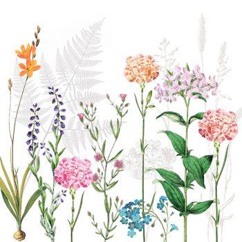 Botanic flowe