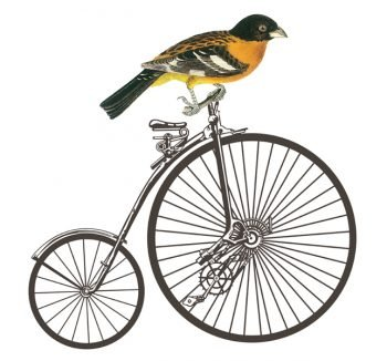 Decoupage Instant Download | Vintage Bike with Bird