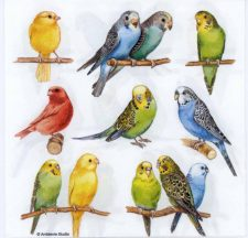 Event Paper Napkins Tropical Birds
