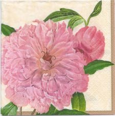 Decoupage Paper Napkins | Botanical Print of a Farmers Rose | Paper Napkins for Decoupage