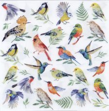 Event Paper Napkins Colorful Birds