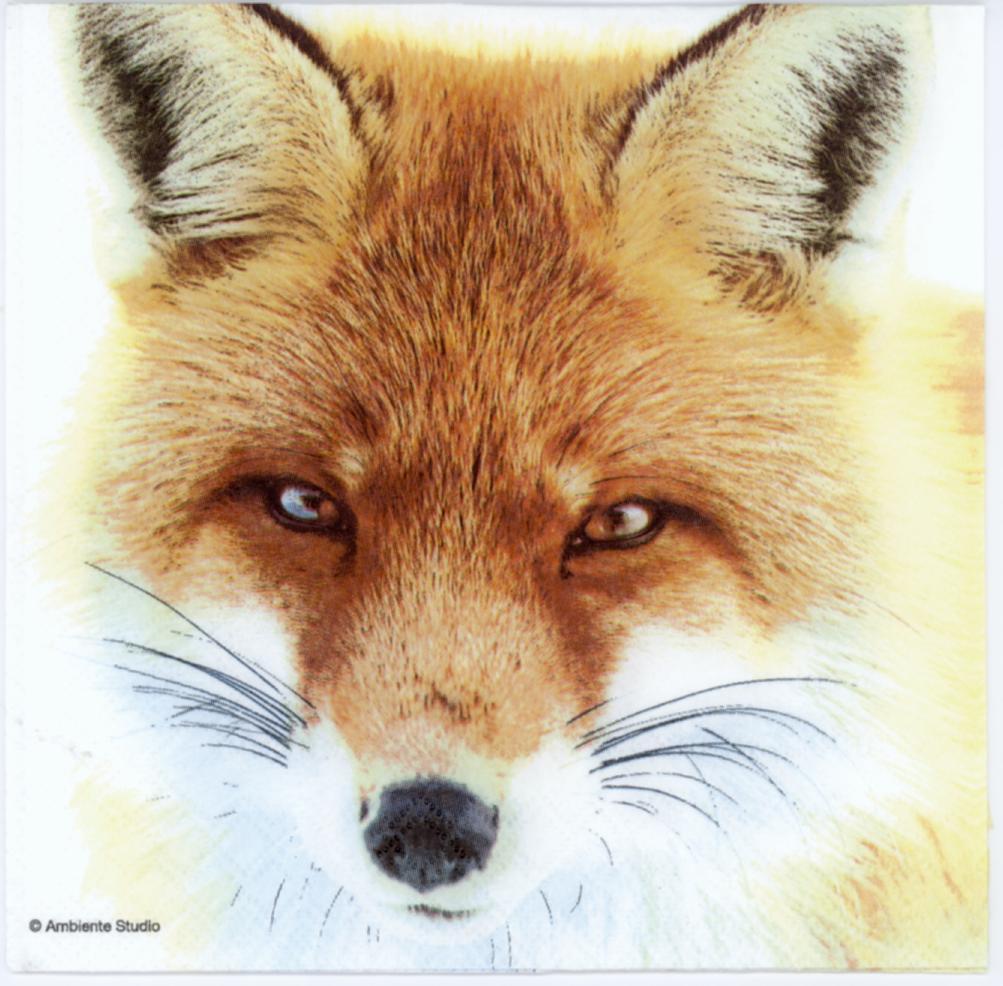 Decoupage Paper Napkins Of Wild Fox Face Decorative Fox Head Napkins Paper Napkin For Diy Decoupage Paper Chiarotino