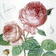 Paper Napkins Vintage Roses