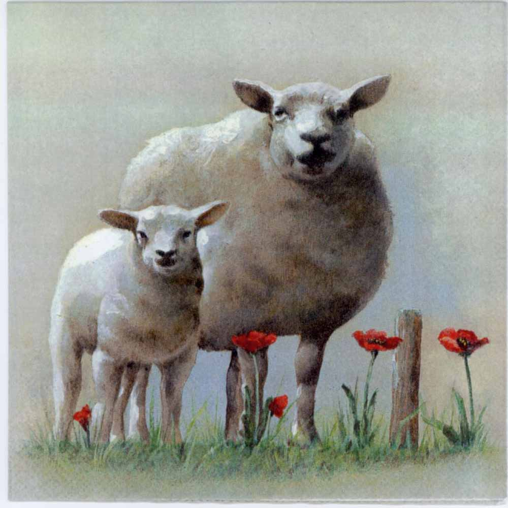 Decoupage Napkins Of Sheep Amp Lamb With Poppies Napkins