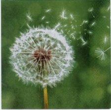 Decoupage Paper Napkin | Flower Napkins | Dandelion