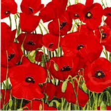 Party Paper Napkins | Red Poppies | Poppy Napkins | Paper Napkins for Decoupage 1