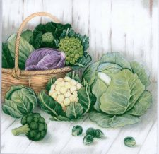 Decoupage Paper of Garden Harvest Cabbage Brussels Sprouts   Paper Napkins for Decoupage