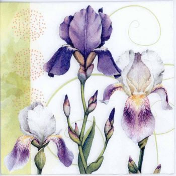 Decoupage Napkins of Watercolor of Iris Flowers