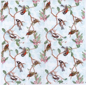 Decoupage Paper Napkins of Song Birds | Paper Napkins for Decoupage