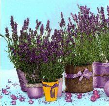 Decoupage Napkin |Lavender Flower Pots in Garden | Lavender Napkins |Paper Napkins for Decoupage