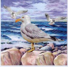 Decoupage Paper Napkins of Seagulls on Ocean Rocks | Paper Napkins for Decoupage
