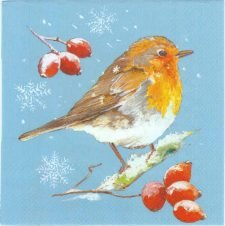 Winter Red Robin | Bird Napkins | Winter Napkins | Paper Napkins for Decoupage